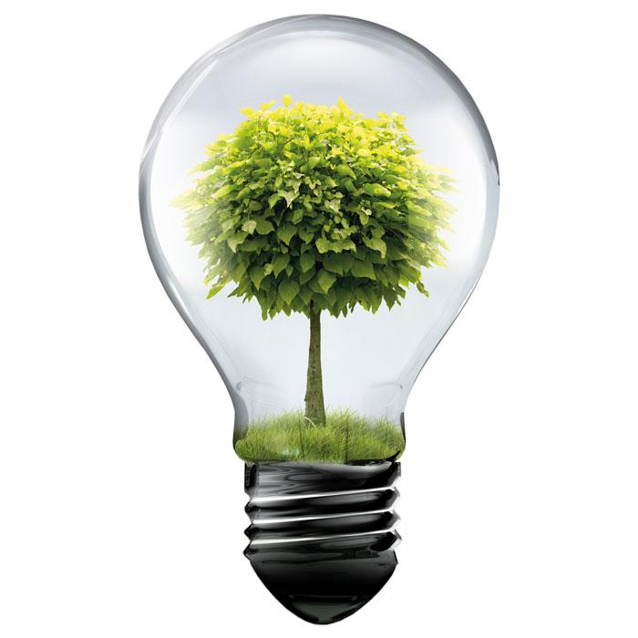 kwk anlagen binder energietechnik energy from biomass. Black Bedroom Furniture Sets. Home Design Ideas